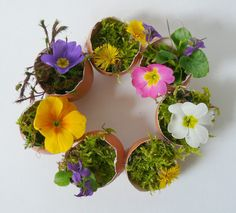 Mini, Plants, Ham And Cheese, Small Candles, Little Flowers, Egg Shell, Farm Shop, Upcycling Ideas, Bricolage