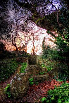 The Druid's Chair