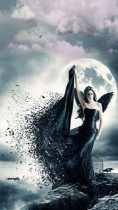 Her presence striking, her command fearless, her darkness fascinating.  It's at the door, she stands as the custodian to my ever touched soul. Tonight I close my eyes allowing grandeur to fill my state of mind as her wings cradle me evermore....YF........not a moment goes by....shine my star, shine....