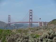 Golden Gate, another point of view