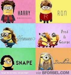 Minions in Harry Potter!!!! #Minions #HarryPotter