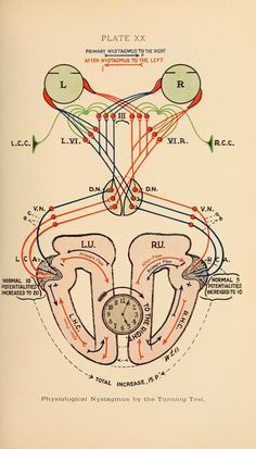 Plate XX. Nystagmus - involuntary eye movements caused by abnormal brain functioning. Diseases of the nose, throat and ear, medical and surgical. 1913.