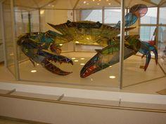 Callinectes Douglassi Crab glass sculpture   by onealk