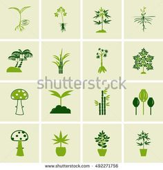 Find Tree Icons Vector Set stock images in HD and millions of other royalty-free stock photos, illustrations and vectors in the Shutterstock collection. Thousands of new, high-quality pictures added every day. Tree Icon, Royalty Free Stock Photos, Icons, Illustration, Plants, Symbols, Illustrations, Plant, Ikon