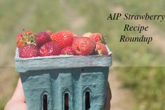 AIP Strawberry Recipe Round-up