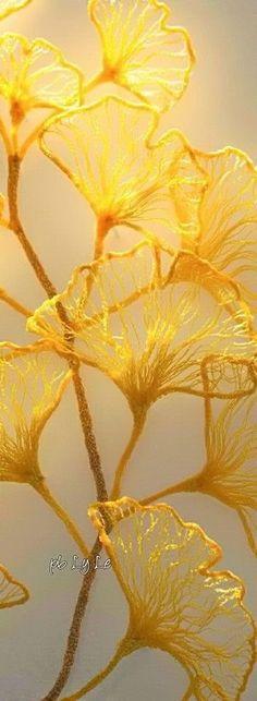 Pin Logo, Shades Of Yellow, Golden Yellow, Seasons, Honey Mustard, My Favorite Things, Sunshine, Autumn, Touch