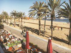 Playa de la Barceloneta  #barcelona
