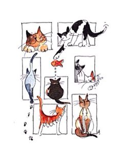 New cats illustration watercolor kitty ideas Image Chat, Cat Quilt, Cat Crafts, Cat Drawing, Crazy Cats, Bad Cats, Cat Art, Cats And Kittens, Kitty Cats
