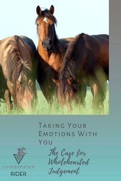 """Leave your emotions at the gate"". It's a principle that I subscribed to for a long time and only recently have I fully processed my thoughts and feelings about it.  >> Confident Rider - mindset, movement and nervous system awareness for equestrians Horseback Riding Lessons, Emotional Resilience, Horse Riding Tips, Horse Grooming, Thoughts And Feelings, Horse Care, Nervous System, Confident, Equestrian"