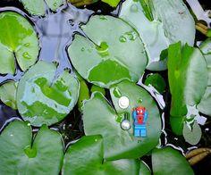 take a rest #樂高 #蜘蛛人 #家鄉 #spidy #lego #legostagram #legominifigures #legomania #legomarvel #legophotography #toyhumor #toyslagram #toyslagram_lego #toyphotography #brickfan #bricknetwork #brickleague #afol #vscotaiwan #vscodaily #vsco #xt1 #fujifilmxt1 #photooftheday #taiwanese #legolife #holiday by imfatboy12