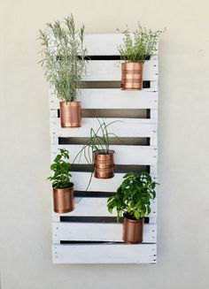 Pallet y latas recicladas convertidas es una huerta vertical. #Wood #Wall #huerta #aromáticas #latas #cobre #cuper #pallet #white #madera #blanco #restore #restoration #recycling #woodcrafts #diy Plant Wall, Plant Decor, Earthy Bedroom, Recycle Cans, Tin Can Crafts, Orchids Garden, Craft Day, Herbs Indoors, Plantation