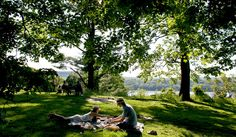 I'd like to have a picnic minus other people. All that's missing is a big hammock. Picnic Spot, Summer Picnic, Local Activities, The New Yorker, Hudson Valley, Ny Times, To Go, Nyc, Picnics