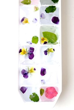 FLORAL ICE WITH MS MURPHY I also use berries and grapes they flavor and also color you drink