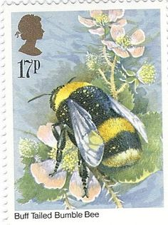 UK CIRCA 1985 A stamp printed in UK shows image of the Bombus terrestris bee Insects circa 1985 Stock Photo I Love Bees, Birds And The Bees, Pocket Letter, Hives And Honey, Honey Bees, Bee Skep, Honey Bee Stamps, Bee Art, Stamp Printing