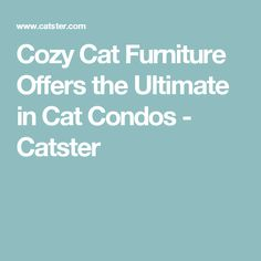 Cozy Cat Furniture Offers the Ultimate in Cat Condos - Catster