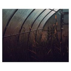 #Helsinki photographer Janne Savon (@jannesavon) found this greenhouse in #Porvoo #Finland. Small details in large views simplicity and dark shades are often present in my work the artist once told us. Submit images for consideration using the hashtag #myfeatureshoot. // #contemporaryphotography #fineartphotography #artphotography #lowlight #interiorphotography via Feature Shoot on Instagram - #photographer #photography #photo #instapic #instagram #photofreak #photolover #nikon #canon #leica…