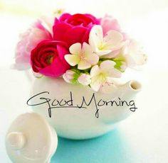 Good Morning Images For Facebook Good Morning Gift, Good Morning Wishes Friends, Good Morning Beautiful Pictures, Good Morning Greetings, Morning Pictures, Morning Pics, Good Morning Beautiful Flowers, Good Morning Roses, Good Morning Images Flowers