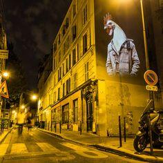 Urban Safari Projections – Fubiz Media