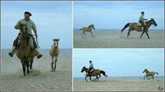 Cavalgada
