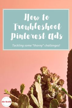 How to troubleshoot Pinterest Ads. Not spending all your Promoted Pin ad budget? Spending too much on Pinterest ads? Ads not converting? No worries, I've seen it all - & can help you fix it all! via @alisammeredith #promotedpins #Pinterest4Biz