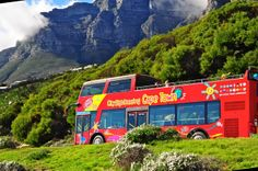 Perfect for tourists eager to explore the city. Hop-on, Hop-off the City Sightseeing South Africa Cape Town Red Bus. Experience a beautiful Cape Town summer in open-top bus at your own pace!