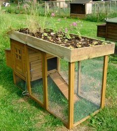 Chicken Coop - Chicken coop with a garden roof. High enough to keep the pot guts out! (lil bastards eat every thing I plant outside) Building a chicken coop does not have to be tricky nor does it have to set you back a ton of scratch. Chicken Coop Designs, Small Chicken Coops, Chicken Barn, Easy Chicken Coop, Chicken Coup, Chicken Feeders, Chicken Houses, Chicken Shelter, Urban Chicken Coop