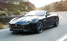 The curvesssss  http://stwot.motortrend.com/files/2012/09/2014-Jaguar-F-Type-front-view-in-motion-623x389.jpg