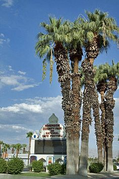 Date Festival coming up February 14 – 23, 2014:  Coachella Valley, Riverside, California
