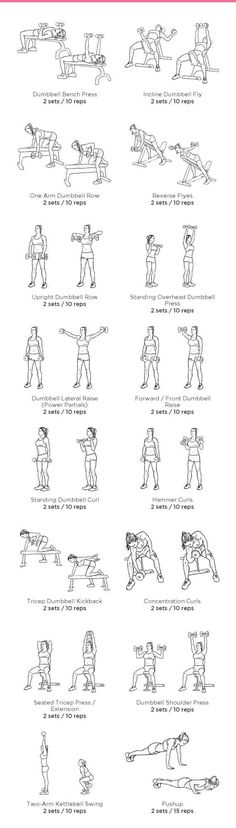 nice Gym Arm Workout
