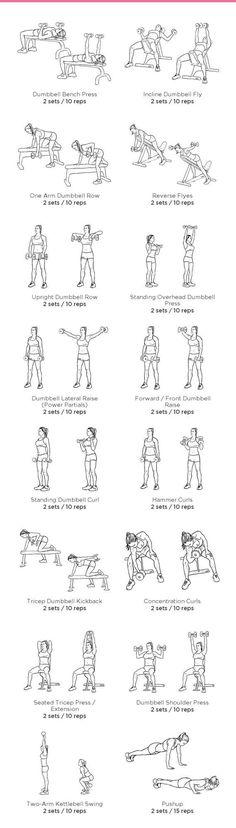 nice Gym Arm Workout
