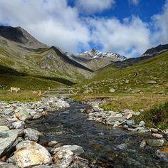Wandering through this high valley we can watch the shadows moving across the hills ⛰🌤 #hikingfun #meadowcreek #martelltal #zufallhütte #shadowvalley #2happyhomeless #sudtirol_lovers