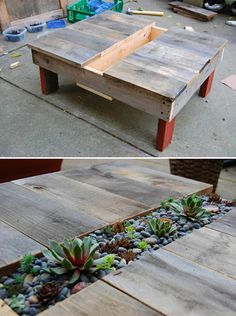 Repurposed pallet furniture -- a table with succulents in the middle.  I would like to put a gutter down the middle to fill with ice & drinks.