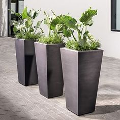 Grooved Planters