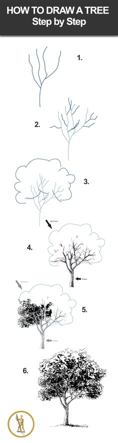 How to draw a tree step by step. #drawinglessons Flower Drawing Tutorial Step By Step, Trees Drawing Tutorial, Flower Drawing Tutorials, Flower Step By Step, Drawing Ideas, Step By Step Painting, Sketches Tutorial, Drawing Tips, Art Tutorials