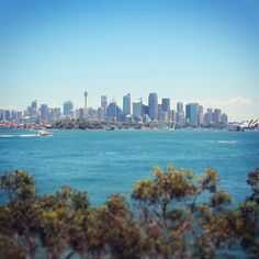 Sydney / How to get an Australian working holiday visa (part one) / A Globe Well Travelled