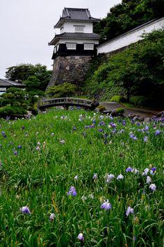 Kushima castle , Japan