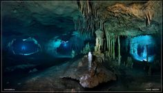 Breathtaking images of underwater caves. Breathtaking images of underwater caves. Dark Places, Places To Go, Medusa Painting, Underwater Caves, Scuba Diving, Under The Sea, Amazing Nature, Cool Pictures, Beautiful Places