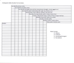 This is a skills checklist I created and use to assess my Kindergarten students during the first marking period.