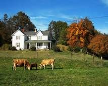 Pics of Farm Houses - Bing Images
