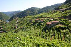 """#RibeiraSacra: """"Tiene todo el encanto de los lugares por descubrir, de los rincones poco habituados a los trasiegos de turistas"""". #Galicia"""