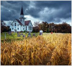 Farm:  Old #country #church.