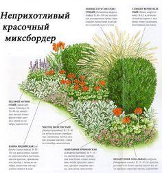 Изображение со страницы http://sait-pro-dachu.ru/wp-content/uploads/2014/06/6-mixborder.jpg.