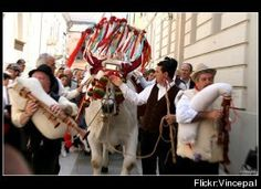 Zampognari in Molise and Abruzzo at Christmas Christmas In Italy, Italian Christmas, Vintage Christmas Cards, Christmas Markets, Italian Symbols, Seven Fishes, Italian Baby, Tourist Center, Italian Traditions