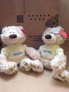 new additions to a family is always great news. Personalised Gund Philbins look great with their jumpers Personalised Teddy Bears, Archie, Jumpers, Twins, Lovers, News, Animals, Personalized Teddy Bears, Animales