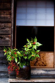 Enkaku-ji temple, Kamakura, Japan The Last Samurai, Meditation, Memoirs Of A Geisha, Kamakura, Japanese House, Japanese Style, Japanese Interior, Japanese Architecture, Buddhist Temple