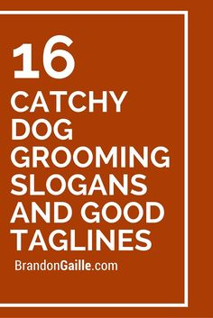 Catchy Dog Grooming Slogans and Good Taglines