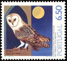 Stamp: Western Barn Owl (Tyto alba) (Portugal) (Animals of the Lisbon Zoo) Mi:PT 1466 Le Plessis Robinson, Nocturnal Birds, Nocturne, Paper Owls, Postage Stamp Art, Vintage Stamps, Owl Art, Small Art, Fauna