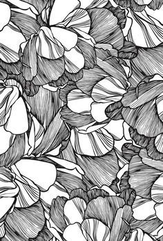 CASCA. Black / White linework #floral #pattern