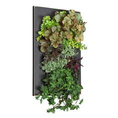 Designed For Architects And DIY Homeowners, The GroVert Living Wall Planter  From BrightGreen Is Here To Make Art Out Of Your Favorite Plants. Fortiu2026