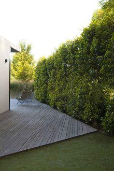 Ivanhoe - Ben Scott Garden Design